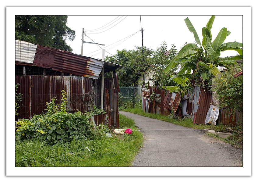 bidonville malacca