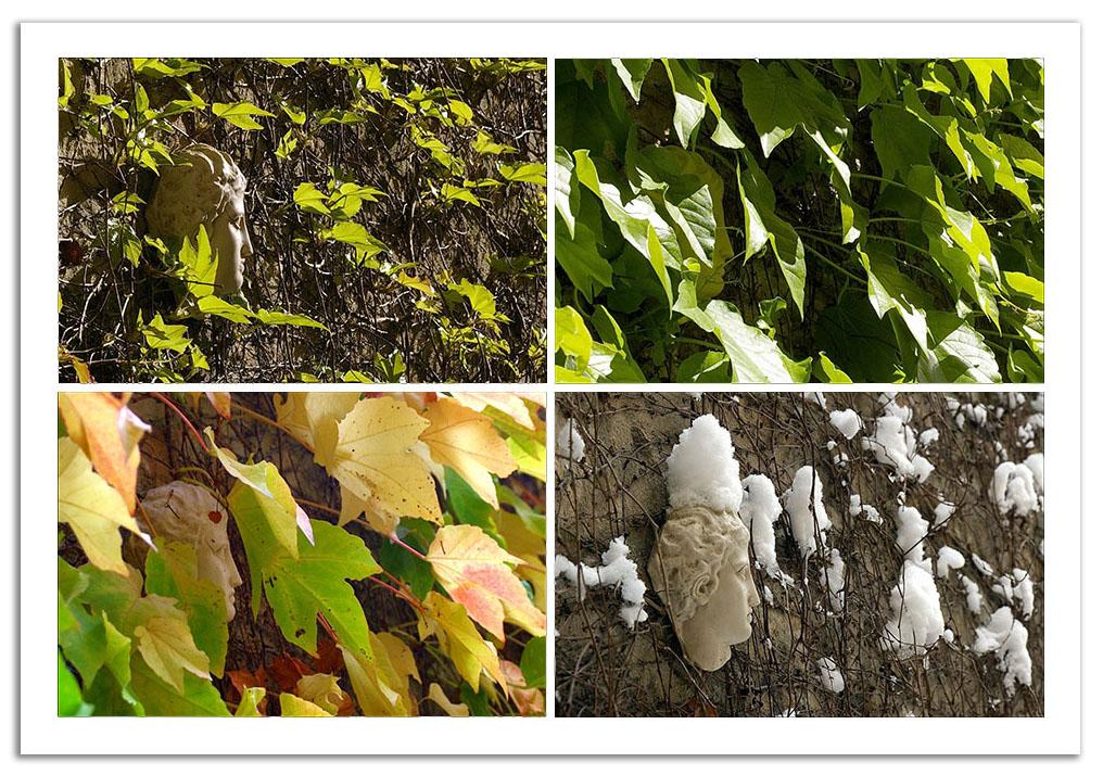 printemps été automne hiver